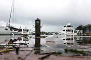"Annapolis, Maryland - June 05, 2016: A perigean spring tide brings detritus and floods the Kunta Kinte-Alex Haley Memorial park located at the City Dock in historic Annapolis early Sunday morning June 5th, 2016.<br /> <br /> <br /> <br /> A perigean spring tide brings nuisance flooding to Annapolis, Md. These phenomena -- colloquially know as a ""King Tides"" -- happen three to four times a year and create the highest tides for coastal areas, except when storms aren't a factor. Annapolis is extremely susceptible to nuisance flooding anyway, but the amount of nuisance flooding has skyrocketed in the last ten years. Scientists point to climate change for this uptick. <br /> <br /> <br /> CREDIT: Matt Roth for The New York Times<br /> Assignment ID: 30191272A"