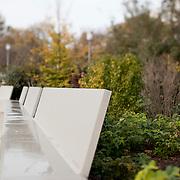 jardin des halles _ décembre 2013