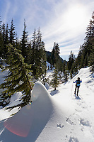 Woman snowshoeing on a sunny day. Washington Cascades, Commonwealth Basin, USA