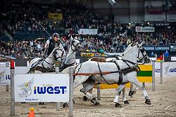 Chardon IJsbrand, NED, Caspere, Feles, Kendi, Maestoso XIV-7<br /> FEI World CupTM Driving - Stuttgart 2018<br /> © Hippo Foto - Stefan Lafrentz<br /> 16/11/2018