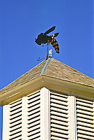 Weather vane of a bee at Florissant Fossil Beds National Monument, Colorado.