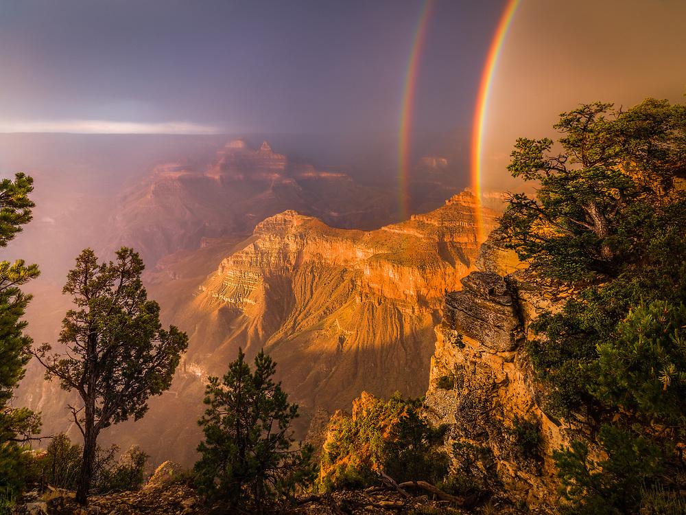 Arizona,
