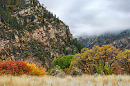 Autumn colors at Glenwood Springs in the Colorado Rockies, USA