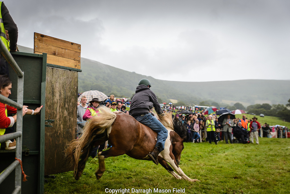 A rider clings on for dear life on to his pony as spectators look on in the pouring rain.