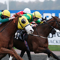 Aquilifer and Shane Kelly winning the 3.10 race
