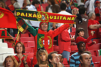 20091010: LISBON, PORTUGAL - Portugal vs Hungary: World Cup 2010 Qualifying Match. In picture: Portuguese supporters. PHOTO: Carlos Rodrigues/CITYFILES