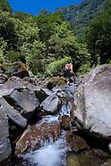 Image Bank Madeira Island