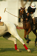 It's polo season in India, and the well-bred man and horse alike are again facing off on grassy fields, endlessly mingling sport and spectacle at the Jaipur Polo Ground in New Delhi, India Sunday Nov. 10, 2002. Invented in South Asia hundreds of years ago, and refined by generations of colonial English cavalrymen, Indian polo had largely disappeared by the 1980s,in the past few years, polo has found new patrons in the magnates who have emerged since India opened up its economy.