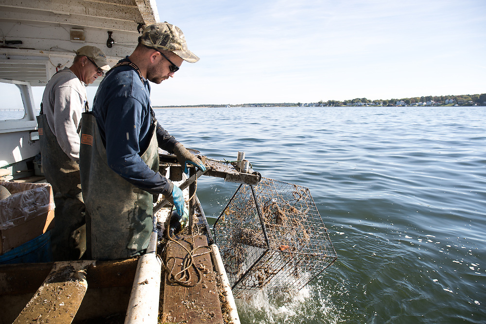 Captain Richard and Ryan Ribb pull up crab traps on the Island Lady   October 11, 2015