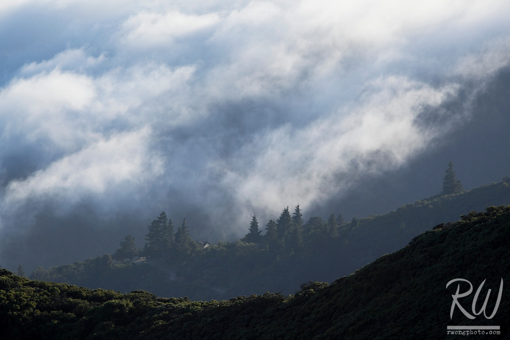 Coastal Fog Rolling Down Ridges of Mount Tamalpais State Park at Sunset, Marin County, California
