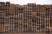 A large stack of wooden pallets on an industrial site near the M74 on the edge of Happendon Wood near Lanark, Scotland. <br /> (photo by Andrew Aitchison / In pictures via Getty Images)