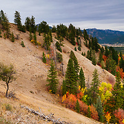 Heather Goodrich riding an unnamed trail in autumn in Wyoming.