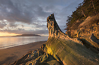 Weathered vertical sandstone rock of the Chuckanut Formation. SanJuan Islands in the distance. Clayton Beach, Larrabee State Park Washington
