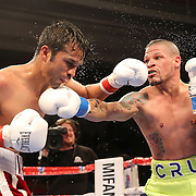 Orlando Cruz Pulse Boxing