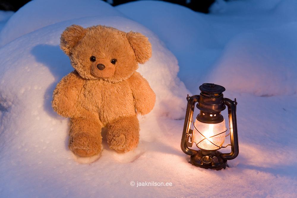 Teddy Bear Sitting next to  Lantern