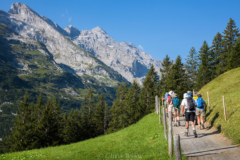 Hikers on the Via Alpina, Swiss Alps