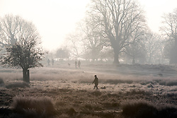 © Licensed to London News Pictures. 23/01/2015. Richmond, UK. People walk their dogs in the misty cold air.  A cold frosty morning in Richmond Park, Surrey today 23rd January 2015. The UK is experiencing some very cold weather. Photo credit : Stephen Simpson/LNP