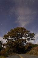 Monroe, New York  - Views of the night sky at Gonzaga Park  on Oct. 15, 2013.
