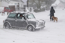 © Licensed to London News Pictures. 28/02/2018. The Lizard, UK.  A mini struggles through snow as The beast from the east struck The Lizard, the most southerly point of Great Britain, today causing havoc in Cornwall. Photo credit: MARK HEMSWORTH/LNP