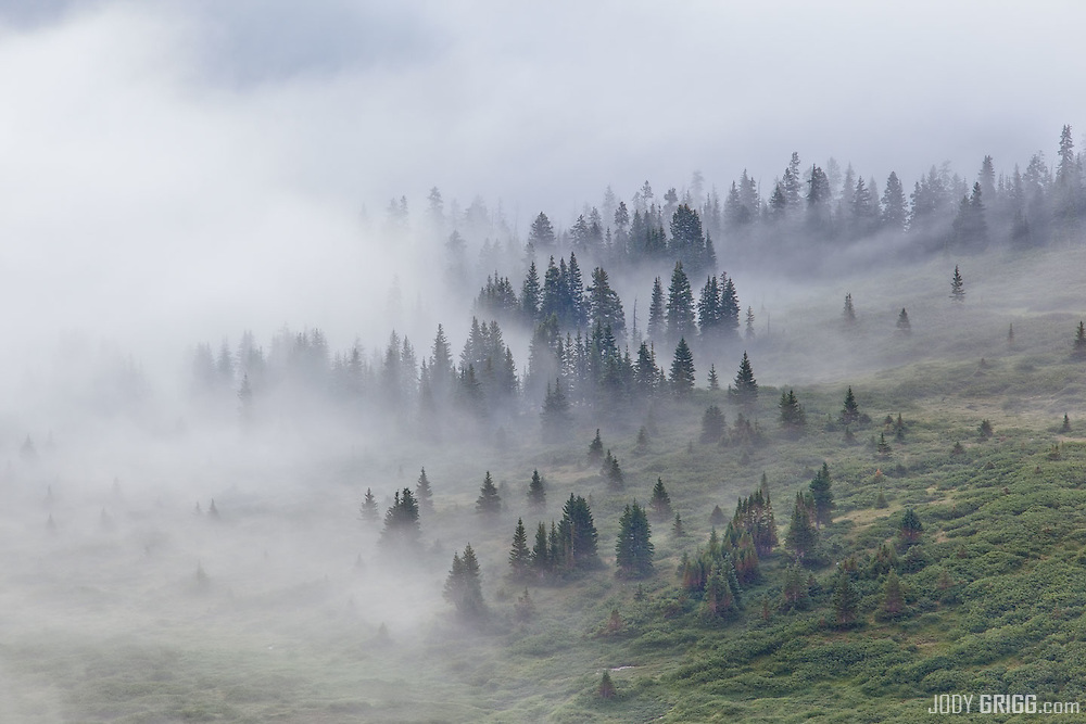 Morning fog along the continental divide near Cottonwood Pass in the Sawatch Range.