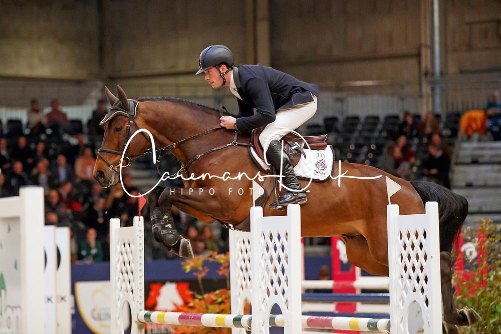 Lips Bart, NED, I Am Codex<br /> KWPN Stallionshow - 's Hertogenbosch 2018<br /> © Hippo Foto - Dirk Caremans<br /> 01/02/2018
