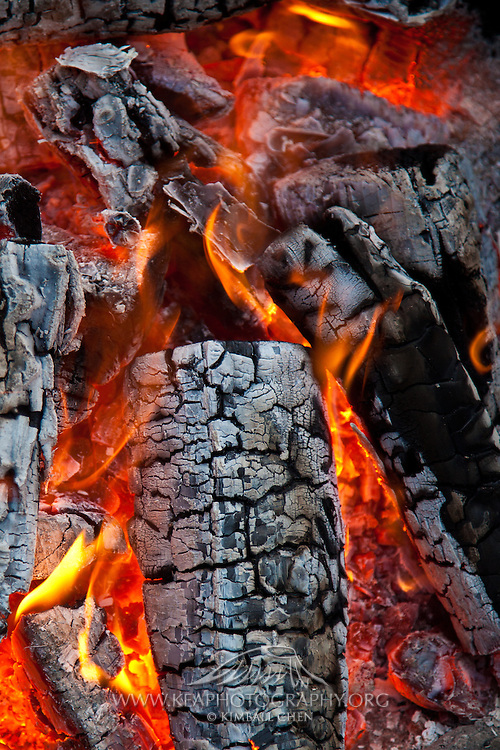 texture/pattern of burning fire logs