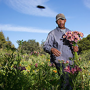 CASFUS; Santa Cruz, CA; Farmer Veteran Coalition