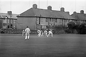 1966  - South Leinster XI v North West XI, for Guinness Cup at Pembroke Cricket Club