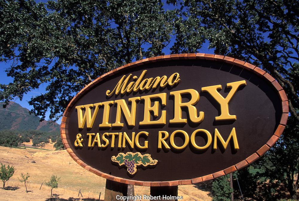 Milano Winery, Hopland, Mendocino County, California, Hopland, Mendocino County