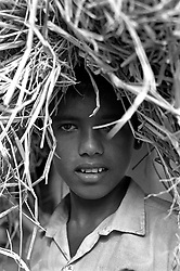 BANGLADESH COX'S BAZAAR DISICT RAMU OCT94 - A Muslim boy carries rice straw on his head. It is used as cattle fodder and fuel for cooking...The Bangladesh Bureau of Statistics estimates the total working child population between 5 and 17 years old to be at 7.9 million...jre/Photo by Jiri Rezac..© Jiri Rezac 1994