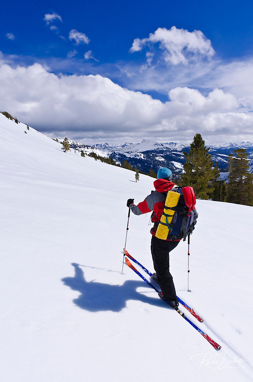 Backcountry skier in the Ansel Adams Wilderness (Mammoth Mountain visible), Sierra Nevada Mountains, California USA