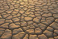 Clark Dry Lake, Anza_borrego Desert State Park California