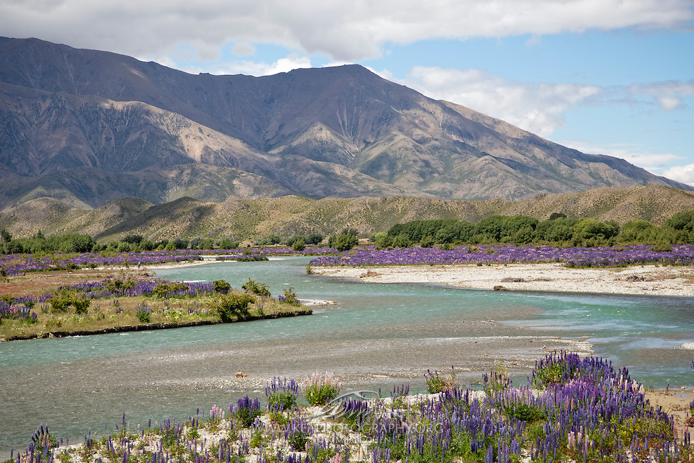 The Ahuriri River winds its way through the Mackenzie Basin, New Zealand.