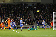 Brighton goalkeeper, David Stockdale (13) sees the ball past him during the Sky Bet Championship match between Brighton and Hove Albion and Ipswich Town at the American Express Community Stadium, Brighton and Hove, England on 29 December 2015. Photo by Phil Duncan.