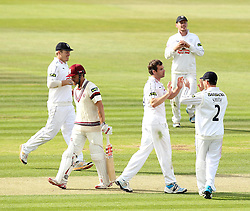 Hampshire's James Tomlinson celebrates taking the wicket of Somerset's James Hildreth - Photo mandatory by-line: Robbie Stephenson/JMP - Mobile: 07966 386802 - 21/06/2015 - SPORT - Cricket - Southampton - The Ageas Bowl - Hampshire v Somerset - County Championship Division One