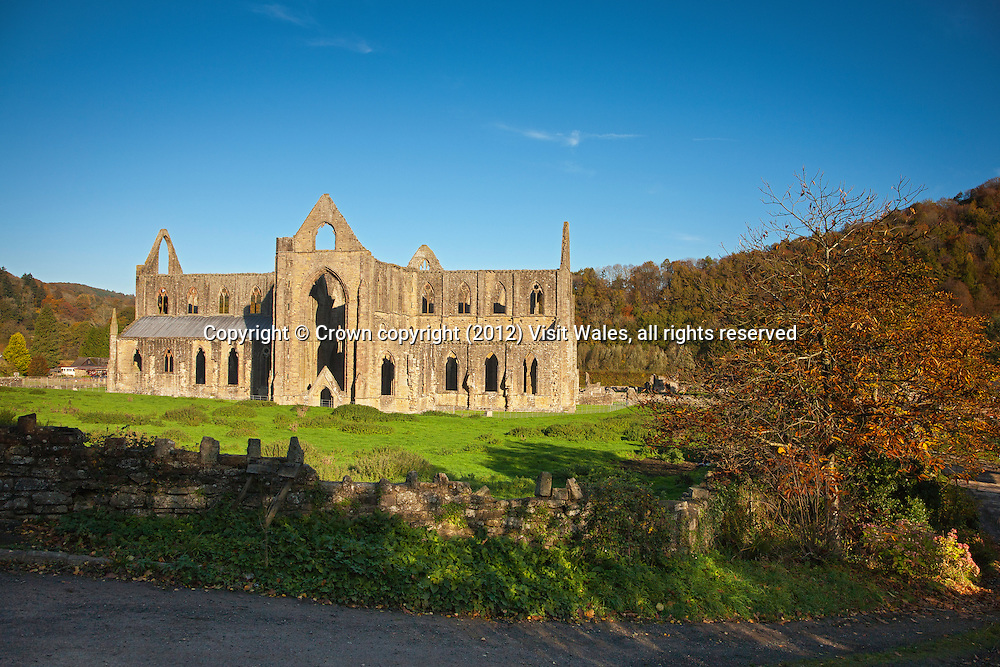 General view of church from south<br /> Tintern Abbey <br /> Cadw Sites<br /> SAMN: MM102<br /> NGR: SO533000<br /> Monmouthshire<br /> South<br /> Abbeys<br /> Medieval<br /> Religious, Ritual and Funerary<br /> Historic Sites