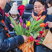 NLD/Amsterdam/20190119 - Nationale Tulpendag 2019, doop tulp Quinty Trustfull, Toeristen plukken tulpen op de Dam