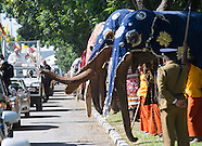 Elephant Guard of Honour for Pope Francis, Sri Lanka Visit