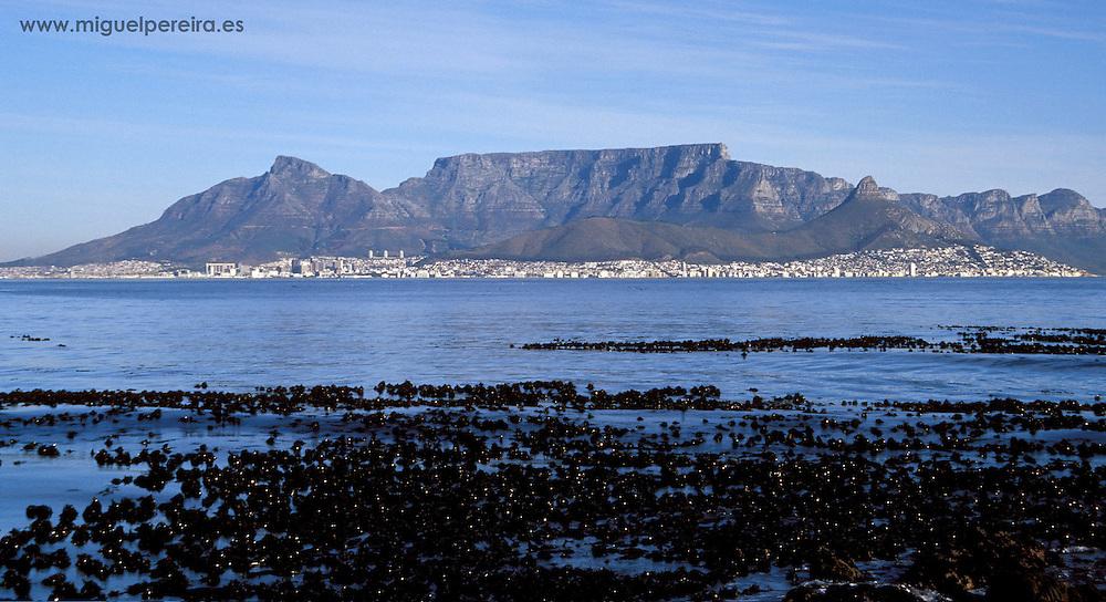 Cape Town view from Robben Island (South Africa).<br /> <br /> Vista de Ciudad del Cabo desde Robben Island (Sud&aacute;frica).