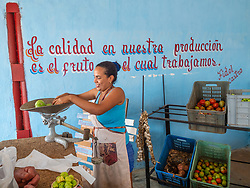 Finding and buying fresh vegetables is a challenge for many Cubans.  I'm glad to see the growth in markets where farmers can sell some of their produce directly to customers.
