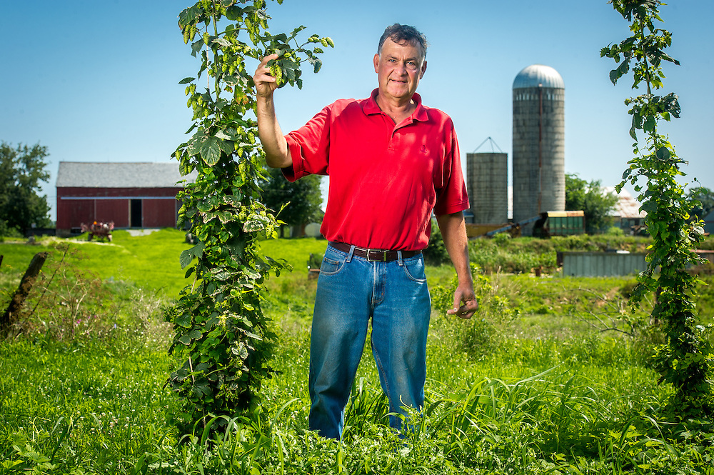 Farmer standing in the middle of a large crop field, holding a hop vine with silos behind him