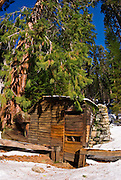 Tharp's Log in winter, Giant Forest, Sequoia National Park, California