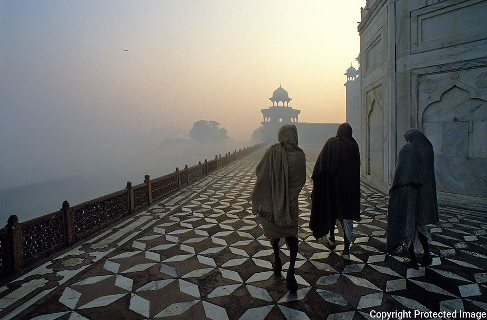 Taj Mahal.Agra.India.