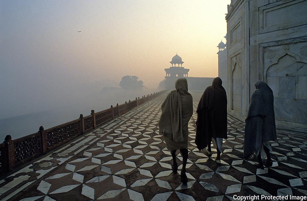 Taj Mahal.Agra.India.