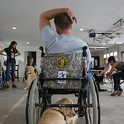 BOYDS, MD - SEP09: Veterans train service dogs at the Warrior Canine Connection in Boyds, Maryland.  (Photo by Evelyn Hockstein/For The Washington Post)