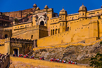 Elephants transporting tourists up hill, Amber Fort & Palace, near Jaipur, Rajasthan, India.