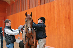 Voorn Albert, Irma and Vincent<br /> Golden Dream Stables -Evertsoord 2010<br /> © Dirk Caremans