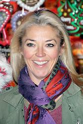 © Licensed to London News Pictures. 21/11/2013, UK.  Tamara Beckwith. Hyde Park Winter Wonderland VIP Opening, Hyde Park, London UK, 21 November 2013. Photo credit : Richard Goldschmidt/Piqtured/LNP