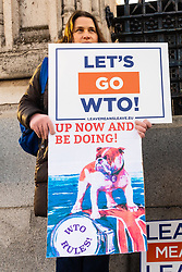 German anti-EU protester Karin, 50, holds a banner demanding the UK leaves the EU on WTO rules is one of a few outside Parliament from the Leave Means Leave campaign group. London, January 14 2019.