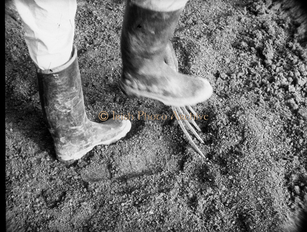 Bord Na Mona.<br />